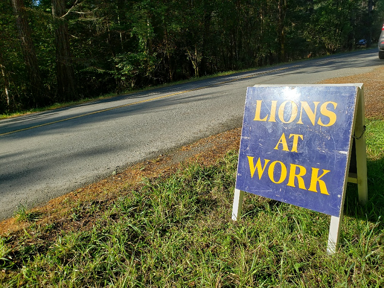 lions at work